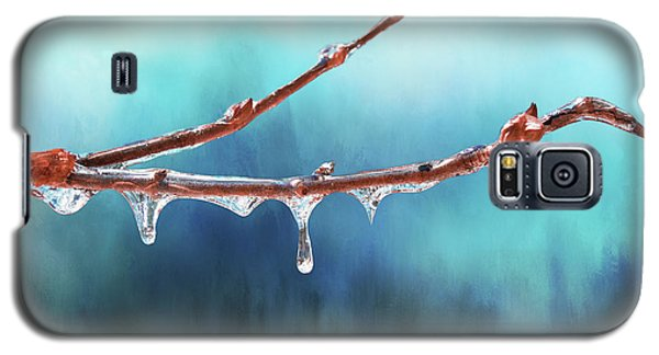 Winter Magic - Gleaming Ice On Viburnum Branches Galaxy S5 Case