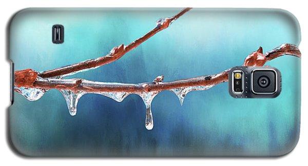 Winter Magic - Gleaming Ice On Viburnum Branches Galaxy S5 Case
