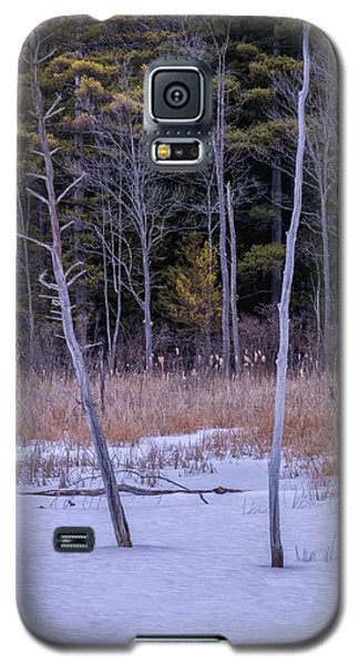 Winter Marsh And Trees Galaxy S5 Case
