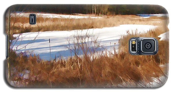 Galaxy S5 Case featuring the photograph Winter Marsh by Betsy Zimmerli