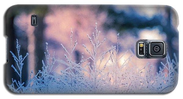 Winter Morning Light Galaxy S5 Case