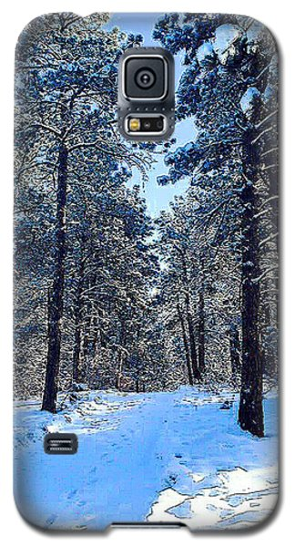 Winter Morning Galaxy S5 Case by Walter Chamberlain