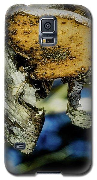 Winter Mushroom Galaxy S5 Case