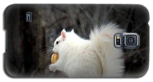 Winter Nibbles Galaxy S5 Case
