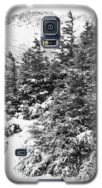 Winter Night Forest M Galaxy S5 Case