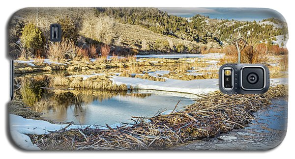 Winter On Beaver Swamp Galaxy S5 Case
