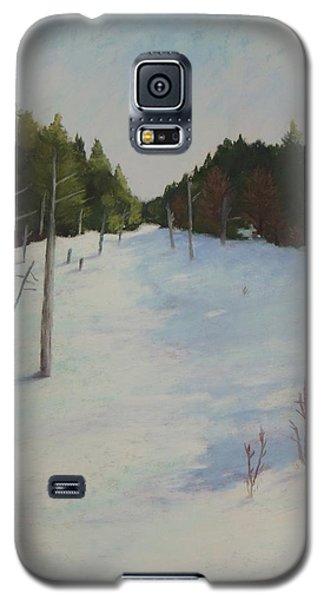 Winter On Moose Pond Galaxy S5 Case