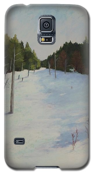 Winter On Moose Pond Galaxy S5 Case