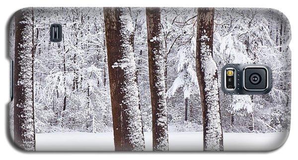 Winter On Paradise Pond Galaxy S5 Case