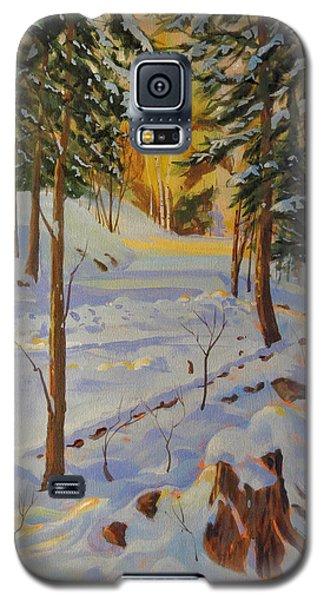 Winter On The Lane Galaxy S5 Case