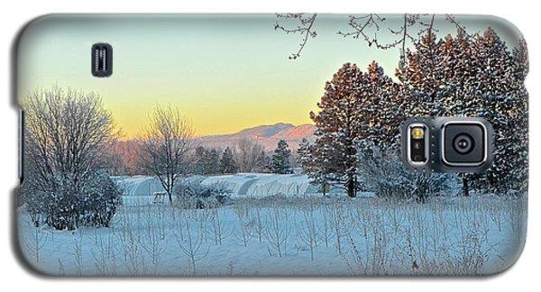 Winter On The Tree Farm Galaxy S5 Case