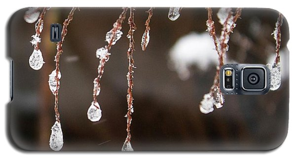 Winter Ornament Galaxy S5 Case