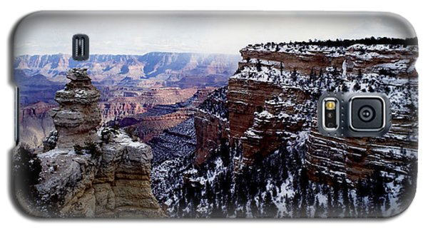 Winter Panorama Galaxy S5 Case