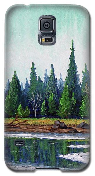 Winter Pond Galaxy S5 Case