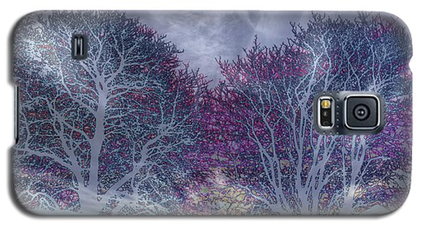Galaxy S5 Case featuring the photograph Winter Purple by Nareeta Martin