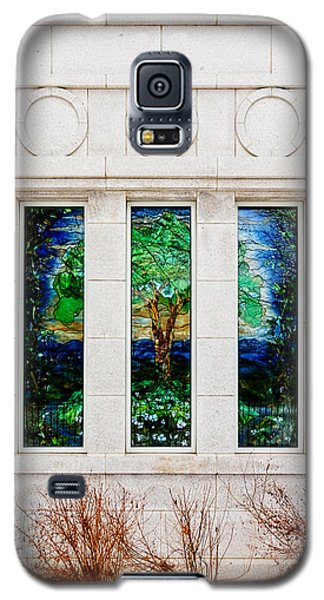 Winter Quarters Temple Tree Of Life Stained Glass Window Details Galaxy S5 Case
