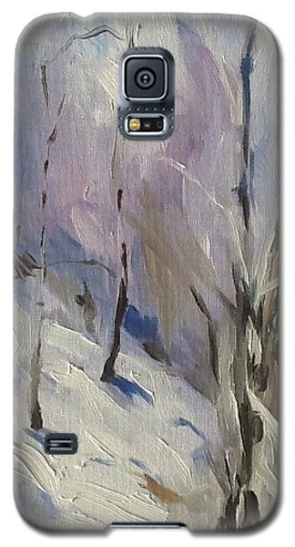 Winter Rage Galaxy S5 Case