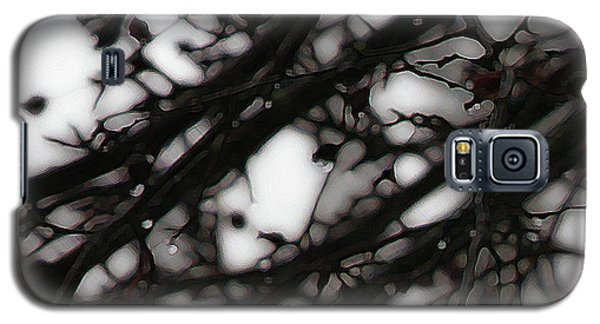 Galaxy S5 Case featuring the photograph Winter Rain - 2 by Linda Shafer