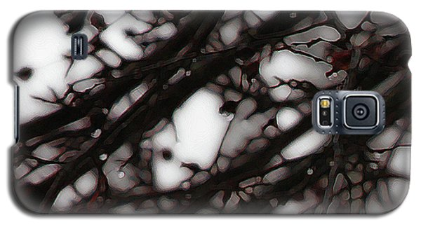 Galaxy S5 Case featuring the photograph Winter Rain - 3 by Linda Shafer