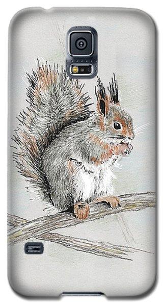 Winter Red Squirrel Galaxy S5 Case