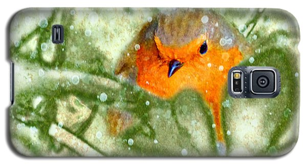 Galaxy S5 Case featuring the photograph Winter Robin by LemonArt Photography