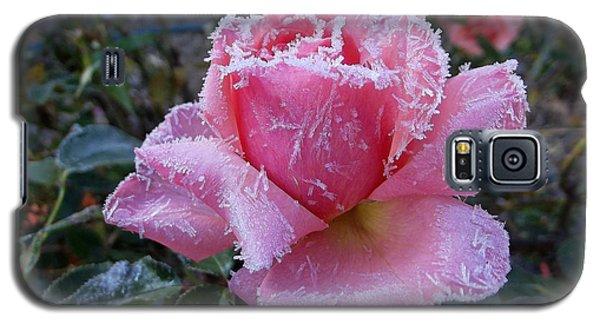 Winter Rose Galaxy S5 Case
