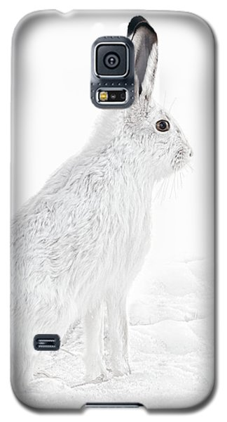 Galaxy S5 Case featuring the photograph  Winter Snowshoe Hare by Jennie Marie Schell