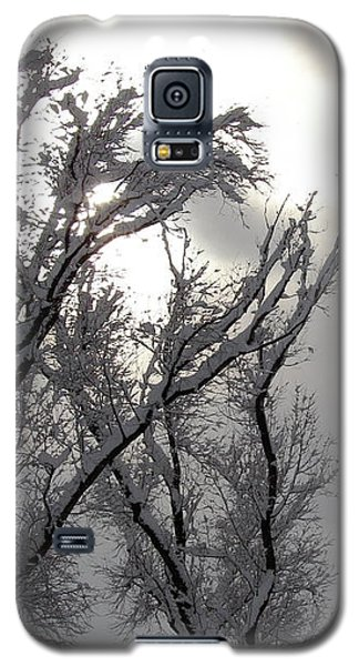 Winter Solstice Utah Galaxy S5 Case