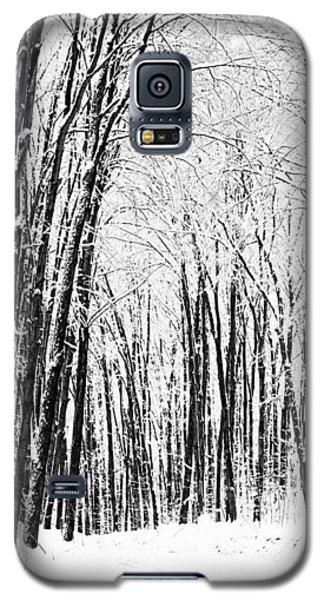 Winter Startk Galaxy S5 Case