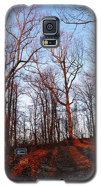 Winter Sunset In Georgia Mountains Galaxy S5 Case by Angela Murray