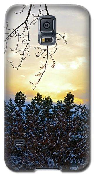 Winter Sunset On The Tree Farm #2 Galaxy S5 Case