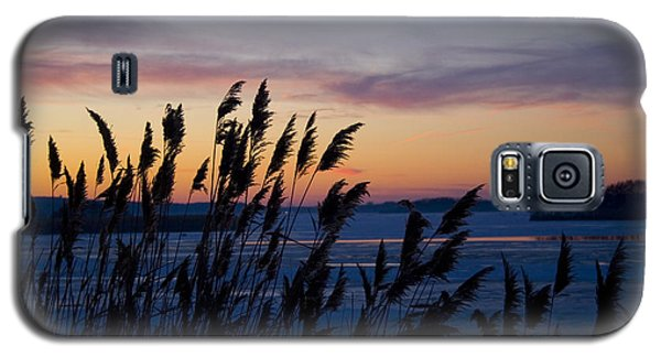 Galaxy S5 Case featuring the photograph Winter Sunset  by Paula Guttilla