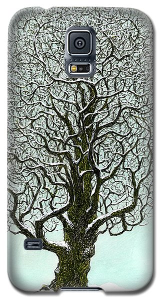 Winter Tree 2009 Galaxy S5 Case by Charles Cater