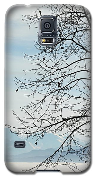 Winter Tree And Alps Mountains Upon The Fog Galaxy S5 Case by Elenarts - Elena Duvernay photo