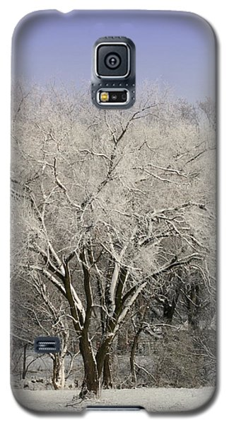 Galaxy S5 Case featuring the photograph Winter Trees by Diane Merkle