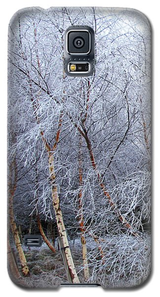 Galaxy S5 Case featuring the photograph Winter Trees by Jacqi Elmslie