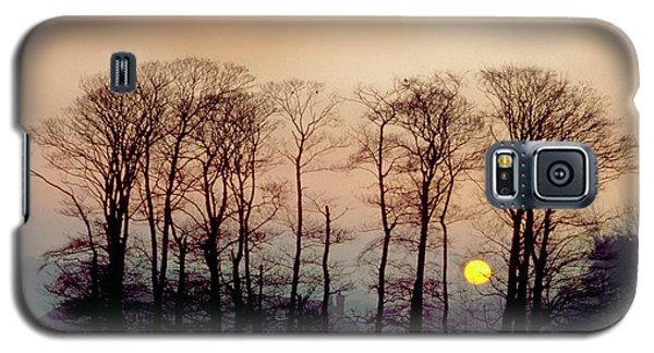 Winter Trees Galaxy S5 Case