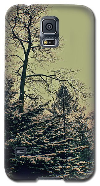 Galaxy S5 Case featuring the photograph Winter Trees by Sandy Moulder