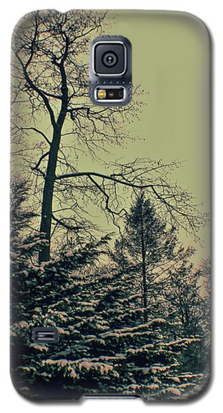 Winter Trees Galaxy S5 Case by Sandy Moulder