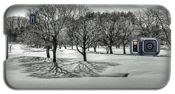 Winter Trees Galaxy S5 Case