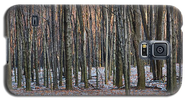 Winter - Uw Arboretum Madison Wisconsin Galaxy S5 Case