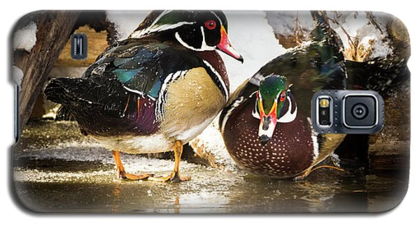 Winter Visitors - Wood Ducks Galaxy S5 Case