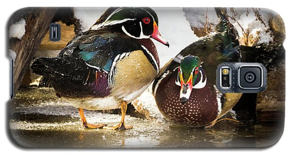 Winter Visitors - Wood Ducks Galaxy S5 Case