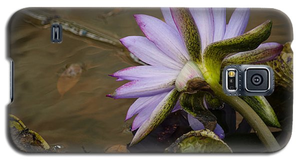 Winter Water Lily Galaxy S5 Case