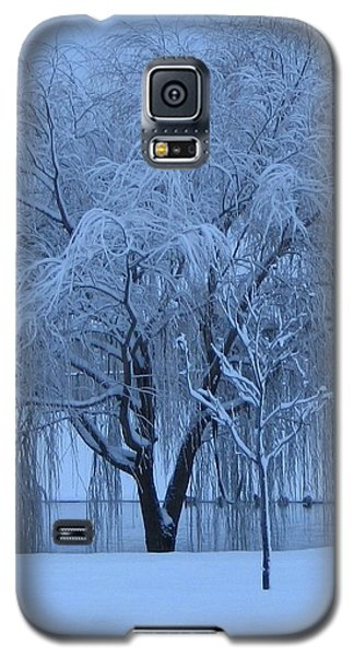 Galaxy S5 Case featuring the photograph Winter Willow Tree Before Dawn_fort Worth_tx by Barbara Yearty