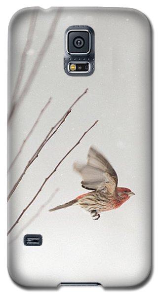 Winter Wind Surfing 1 Galaxy S5 Case