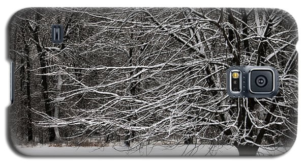 Winter Wonderland Galaxy S5 Case