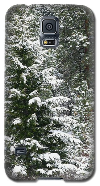 Galaxy S5 Case featuring the photograph Winter Woodland by Will Borden