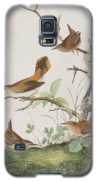 Winter Wren Or Rock Wren Galaxy S5 Case by John James Audubon