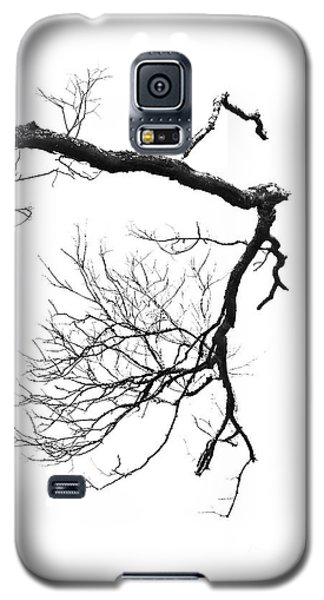 Galaxy S5 Case featuring the photograph Wintered Over by Skip Willits